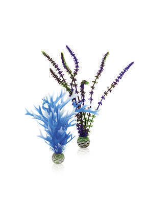 biOrb plantenset medium blauw & paars