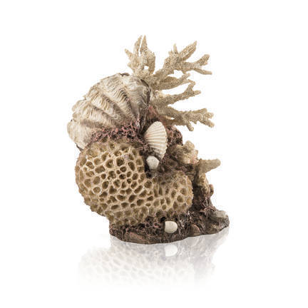 biOrb koraal & schelpen ornament naturel